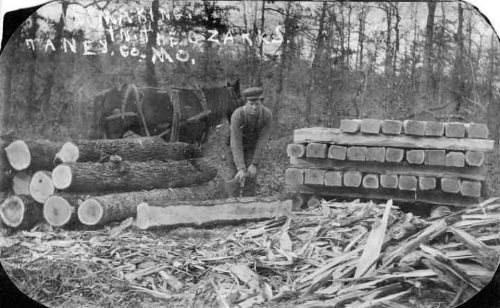 Luther Vining logging in the Ozarks.