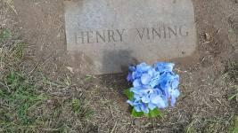 henry vining grave