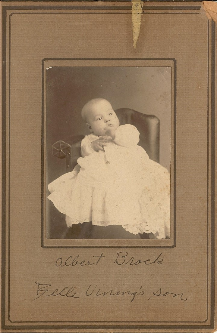 albert brock son of belle vining